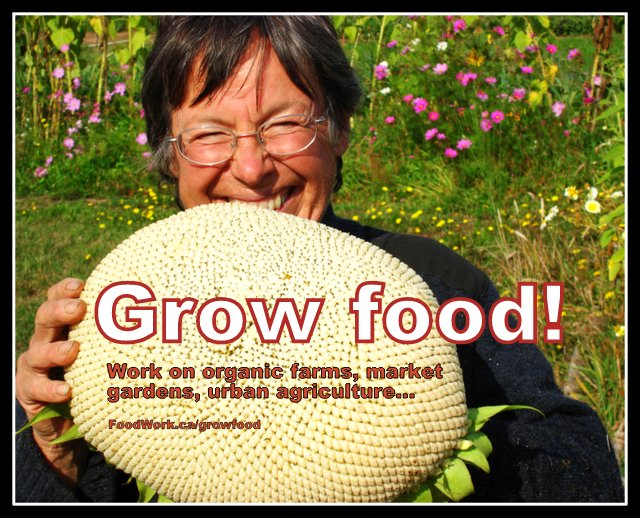 Jobs, internships and volunteering on organic farms, market gardens, urban agriculture, more: FoodWork.ca/GrowFood